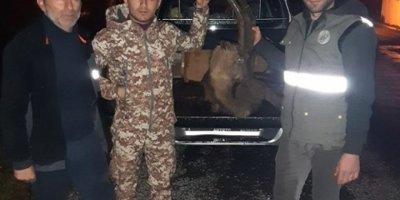 Kaçak Yaban Keçisi Avına 30 Bin Tl Ceza