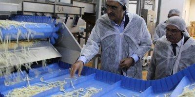 Konya Şeker'in yatırımlarıyla patates üretimi de arttı