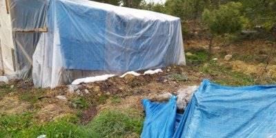 Mersin'de Bekçi Çadırda Zehirlenerek Öldü
