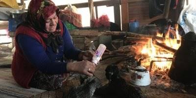 Mersin'de Sarıkeçili Yörükler'in Oğlak Besleme Telaşı Başladı