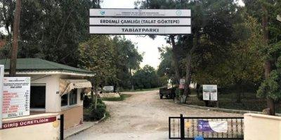 Talat Göktepe Tabiat Parkı Çamlığı'nın İşletmesi İçin Yeni Protokol
