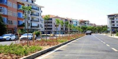 Aksaray'da Peyzaj Çalışmaları