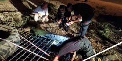 Konya'da Sulama Kanalına Düşen Köpeği İtfaiye Kurtardı