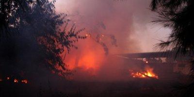 Mersin'de Araştırma Enstitüsündeki Yangın Söndürüldü