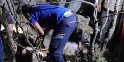 Konya'da Kayalıklarda Sıkışan Çoban Köpeğini Afad Ekipleri Kurtardı