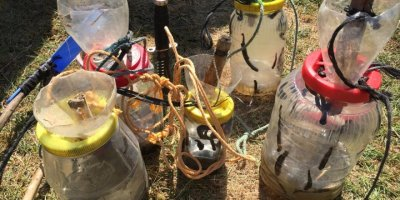 Beyşehir Gölü'nde Sülük Avcılığı Yapan 2 Kişiye 8 Bin Lira Ceza