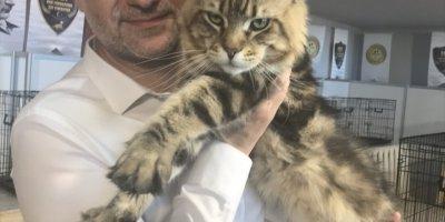 Hayvanseverleri Buluşturan Fuar Antalya'da Açıldı