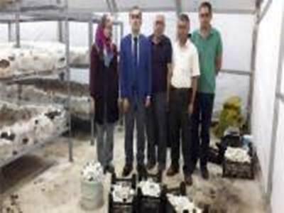 Kazımkarabekir'de Genç Çiftçi Hasat Yapmaya Başladı
