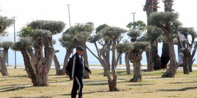 Antalya, Muğla, Isparta Ve Burdur'da 65 Yaş Ve Üstü Vatandaşlar Sokağa Çıktı