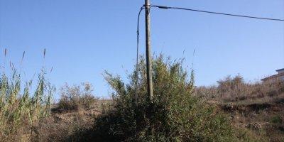 Antalya'da Telefon Direklerinden Kablo Hırsızlığı