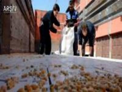 Karaman'dan Mısır Yüklenen Kamyon Sırra Kadem Bastı