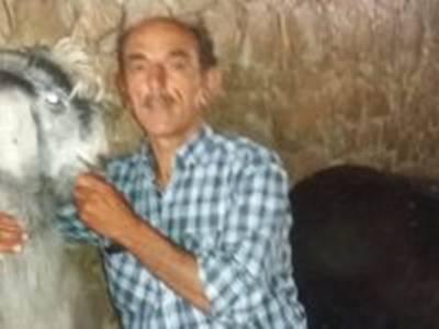 Antalya'da Çalınan Keçiler Bulundu