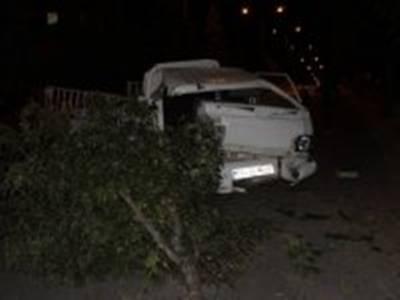 Karaman'da Trafik Kazasında Serçe Telef Oldu