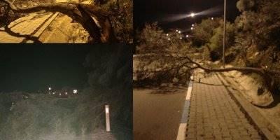 Antalya Kaş'ta Fırtına Hayatı Olumsuz Etkiledi