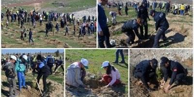 Karaman'da 2 Bin Fidan Toprakla Buluştu