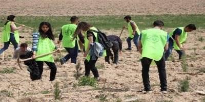 Karaman'da KYK Öğrencileri 300 Fidanı Toprakla Buluşturdu