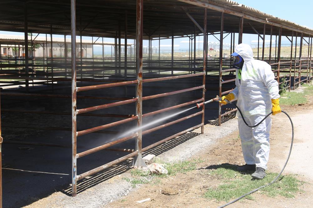 Karaman dezenfekte çalışmaları