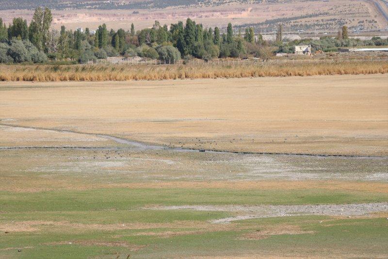 Kuş Cenneti Akkaya Barajı Eski Günlerine Kavuşacak