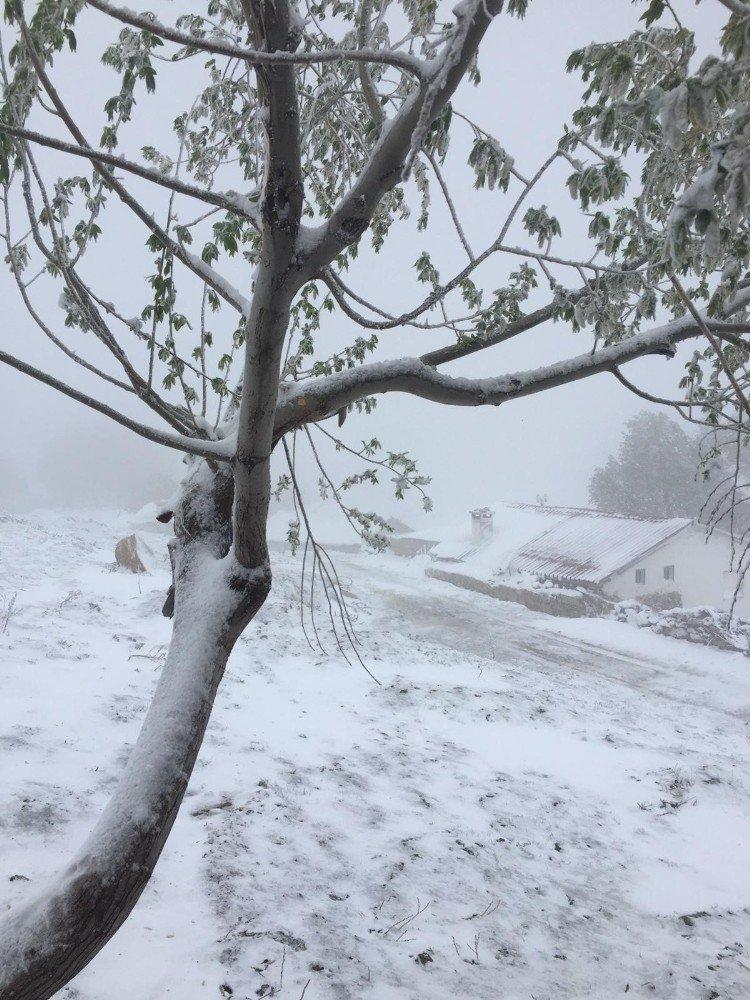 Antalya'da Bayram Sabahına Kar Yağışıyla Uyandı