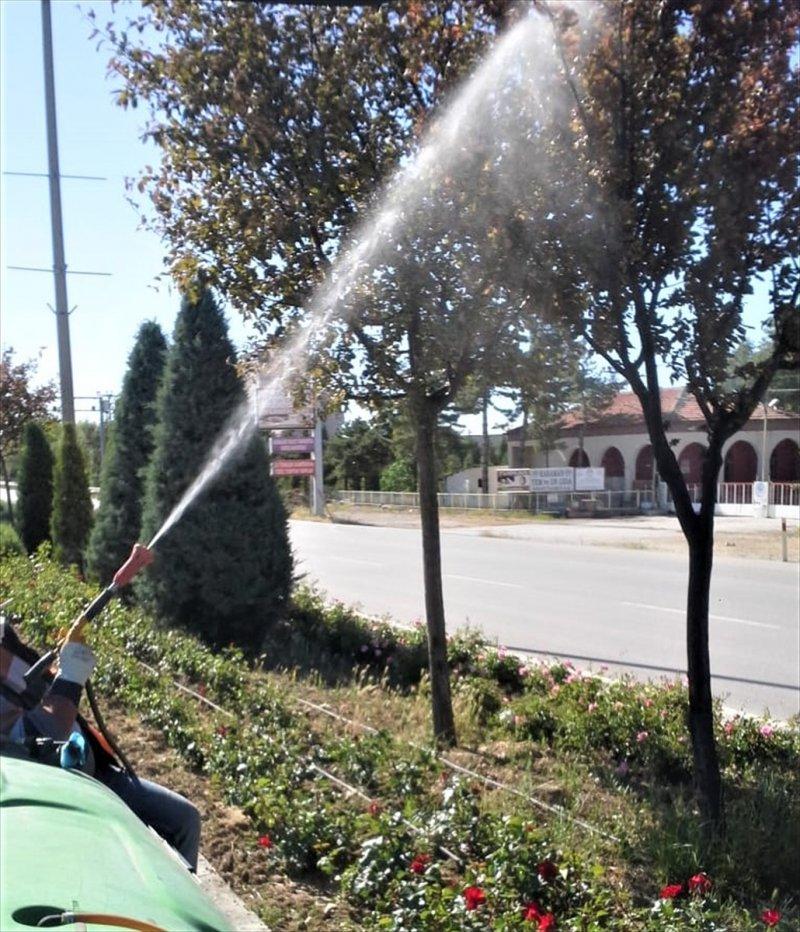 Karaman'da Yazlık Haşerelerle Mücadele Başladı