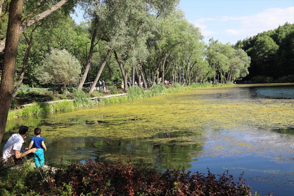 Ankara'nın Tabiat Harikası, Çubuk Karagöl