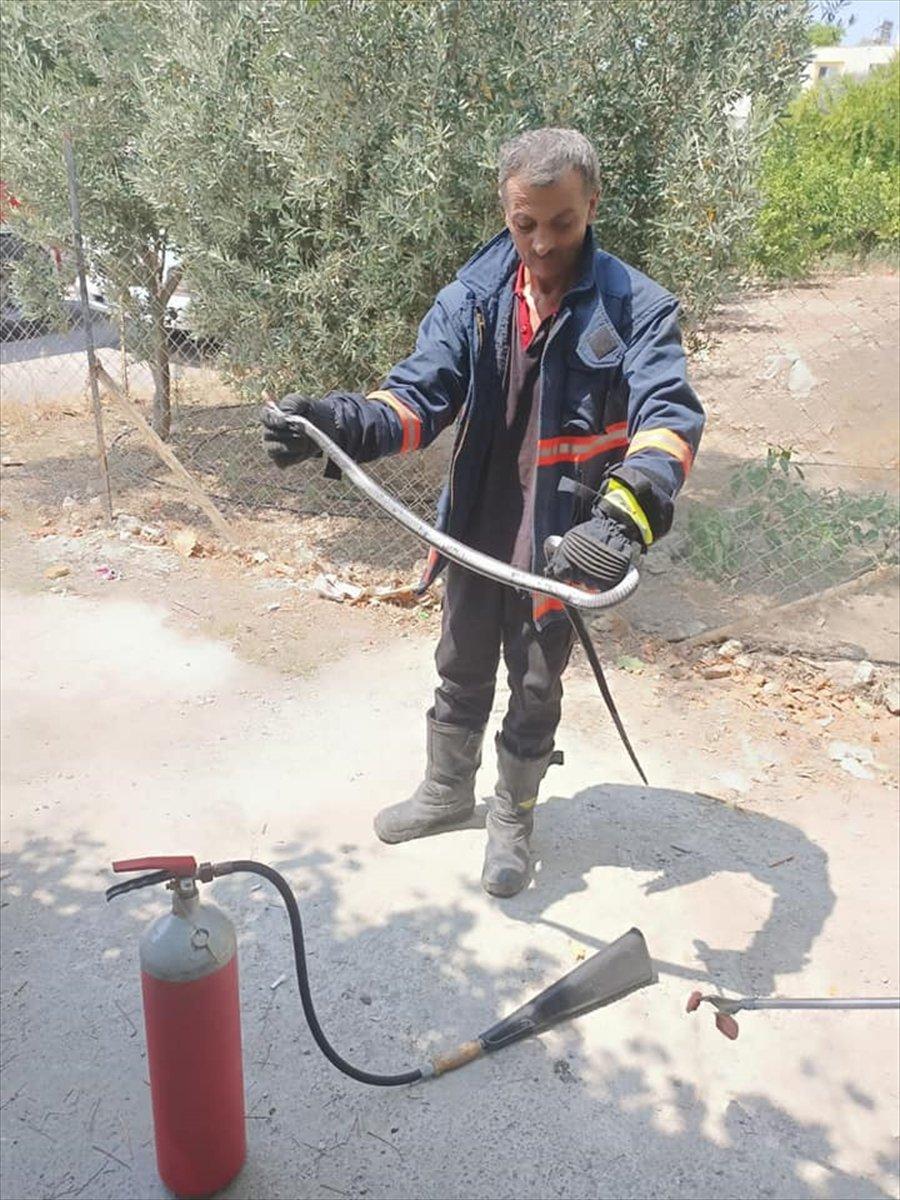 Mersin'de Evin Mutfağına Giren Yılanı İtfaiye Ekibi Yakaladı