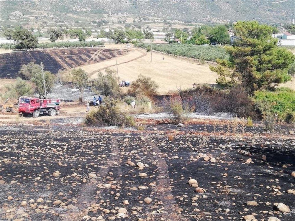 Antalya'da Çıkan Yangında 25 Dönüm Tarım Arazisi Zarar Gördü