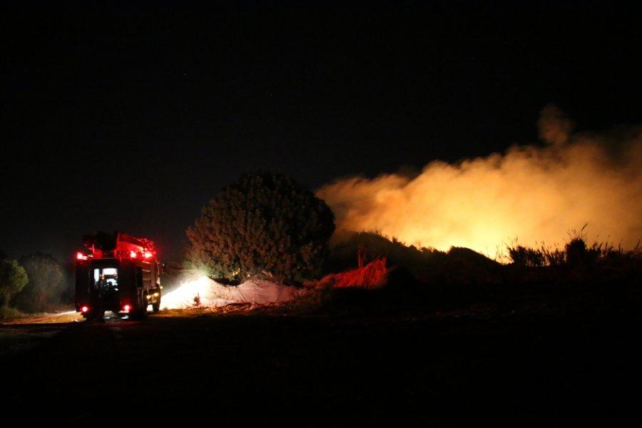 Mersin'de Araştırma Enstitüsünün Bahçesinde Çıkan Yangın Söndürüldü