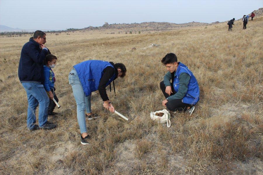 Karapınar'da Binlerce Meşe Palamudu Toprakla Buluşturuldu