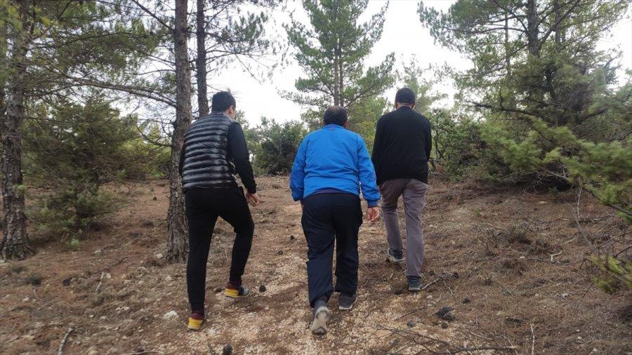 Gülnar'a Yeni Yürüyüş Yolu Yapıldı