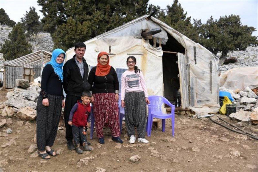 Mersin'de Yaylada Yaşayan Yörük Ailenin Yol Sorunu Çözüldü