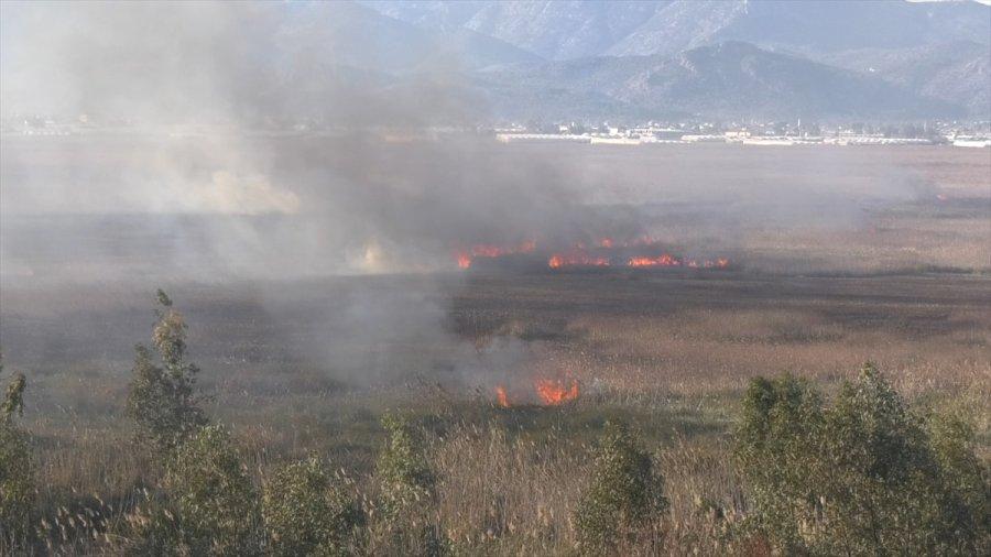 Antalya'nın Kaş İlçesinde Sazlık Alanda Çıkan Yangın Kendiliğinden Söndü