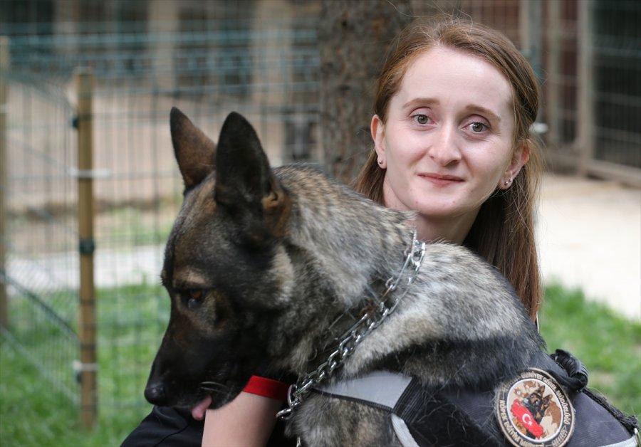 Eskişehir Emniyetinin Özel Köpeklerini Anne Şefkatiyle Eğitiyorlar